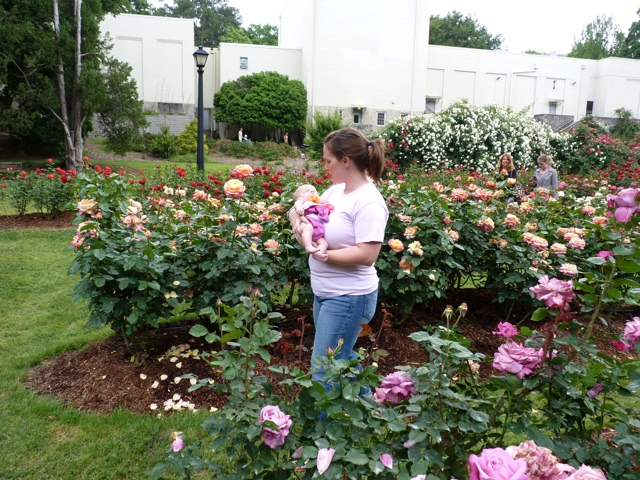 Rose garden for Rose garden design